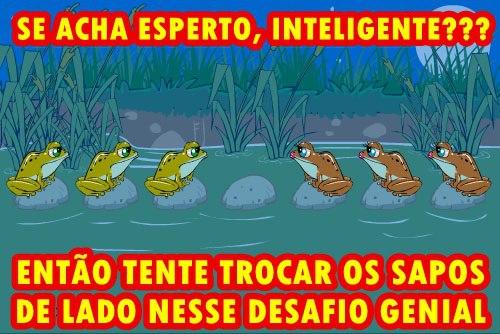 SAPINHO BAIXAR TESTE DO