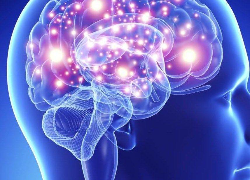 Como aumentar a sua inteligência